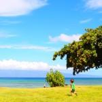 海外旅行の持ち物 ハワイ子連れなら?何歳から行ける?飛行機料金は?