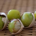 銀杏の果肉の処理と薄皮の取り方は?長期保存の為の冷凍方法は?