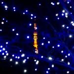 東京タワーのクリスマスライトアップの時間とスポットは?混雑状況は?